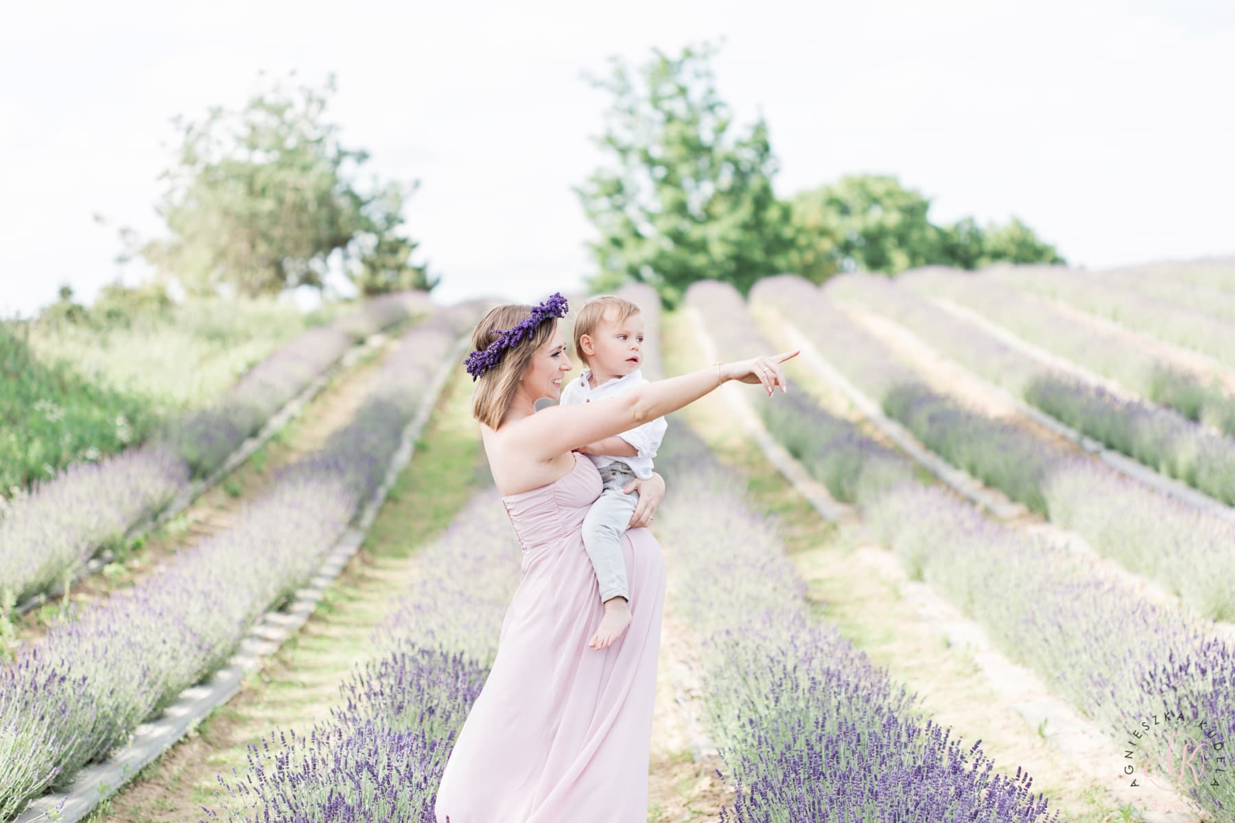 photo session in lavender