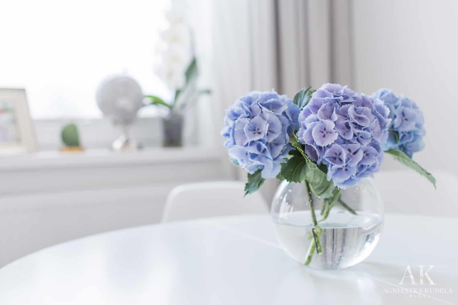 niebieskie hortensje w jadalni