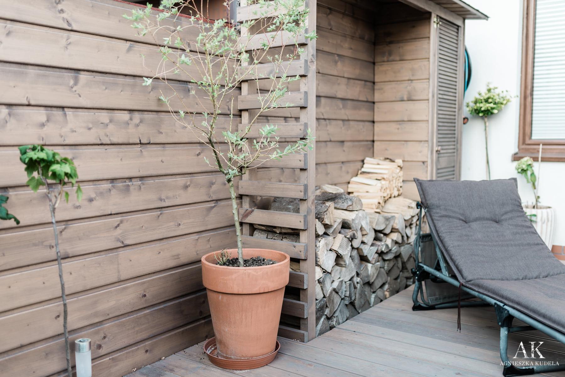 drewutnia w malym ogrodku